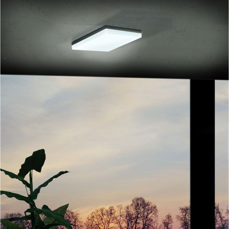 Eglo-94872 - Sonella - Outdoor LED Anthracite  Wall/Ceiling Lamp